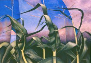 11 Solstice Corn