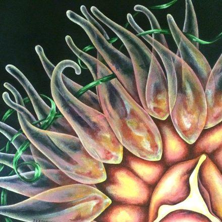 Detail of Nebula Anemone
